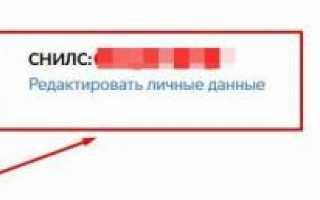 Госуслуги Личный кабинет на ПГУ.Мос.ру