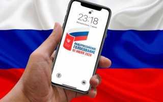 Сайт онлайн голосования по поправкам к Конституции РФ
