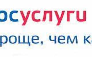 Электронное ГУВМ МВД России: госуслуги