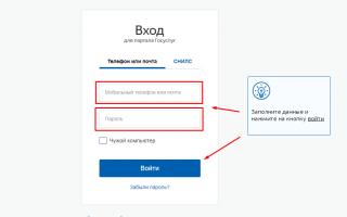 Госуслуги Бор – официальный сайт, личный кабинет