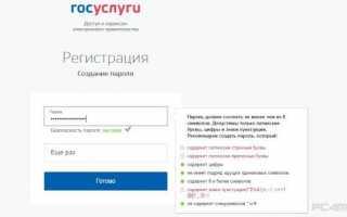 Сайт Госуслуг в г. Воронеж : регистрация, кабинет, услуги