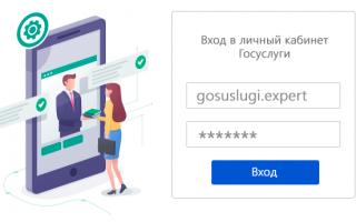 Личный кабинет Госуслуги Владимир – официальный сайт, вход, регистрация