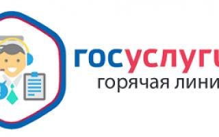 Горячая линия Госуслуг – Бесплатный телефон по Российской Федерации, номер службы поддержки 8800