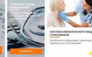 Запись к врачу в электронной регистратуре Московской области