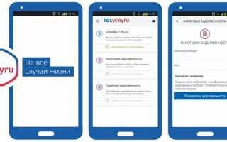 Госуслуги скачать бесплатно: для Windows 7 и Виндовс 10, для Android, для IOS