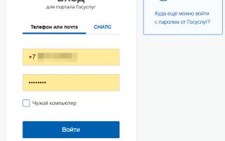 Госуслуги Казань – официальный сайт, личный кабинет