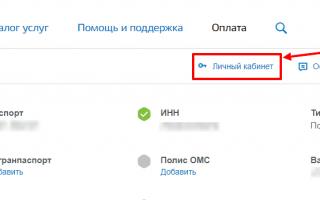 Личный кабинет Госуслуги — Омская область