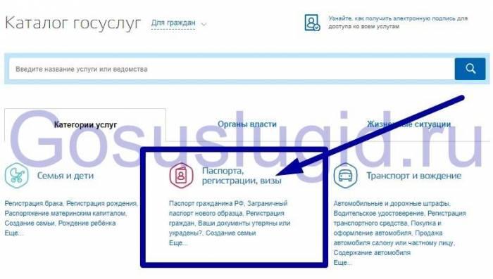 1.-Registratsiya-vizy.jpg