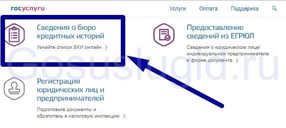 2.-Svedeniya-o-BKI.jpg