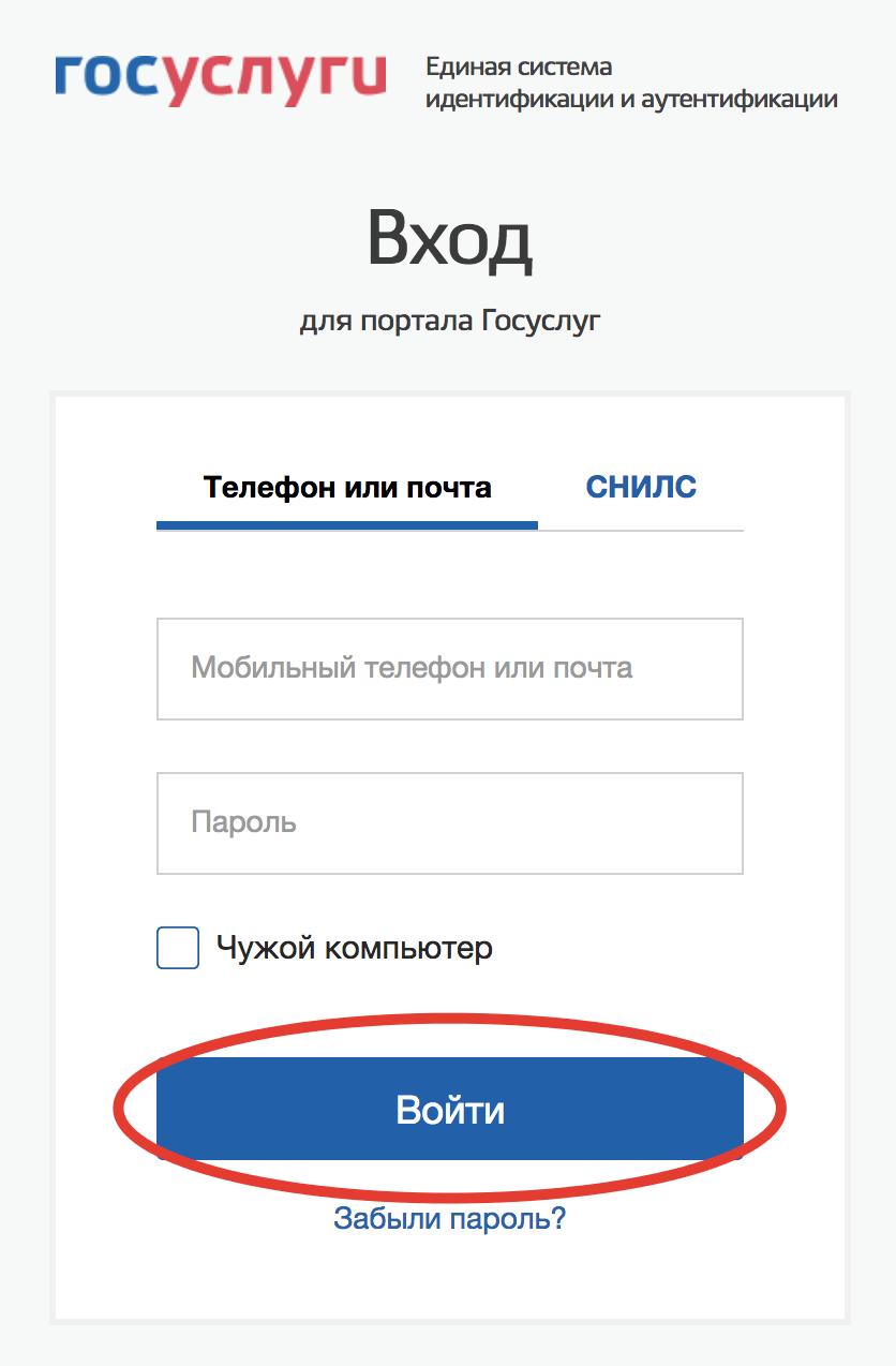 login-form-gosuslugi.png