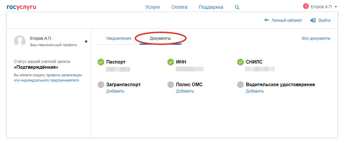 gosuslugi-lk-dokumenty.png