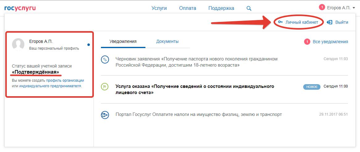 gosuslugi-lk-uroven-uchetnoy-zapisi.png
