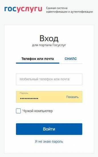 gosuslugi_registracziya_24_stranicza-vhoda.jpg