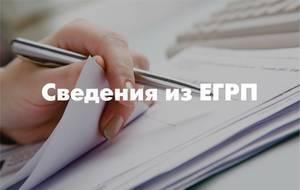 poluchit_vypisku_portala.jpg