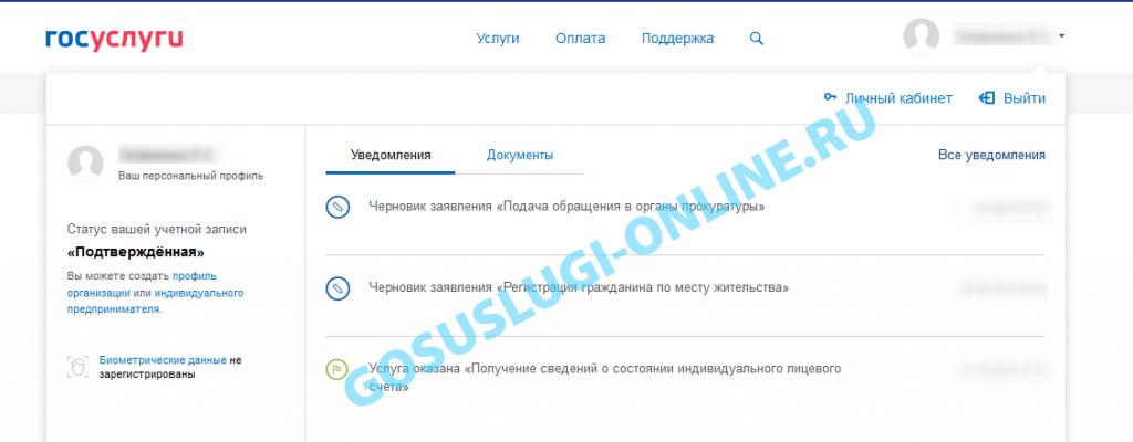 kak-udalit-chernovik-v-gosuslugah_3-1024x400.png