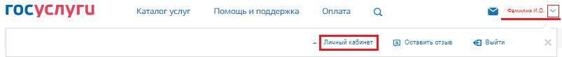 gosuslugi-lichnyj-kabinet-1.jpg